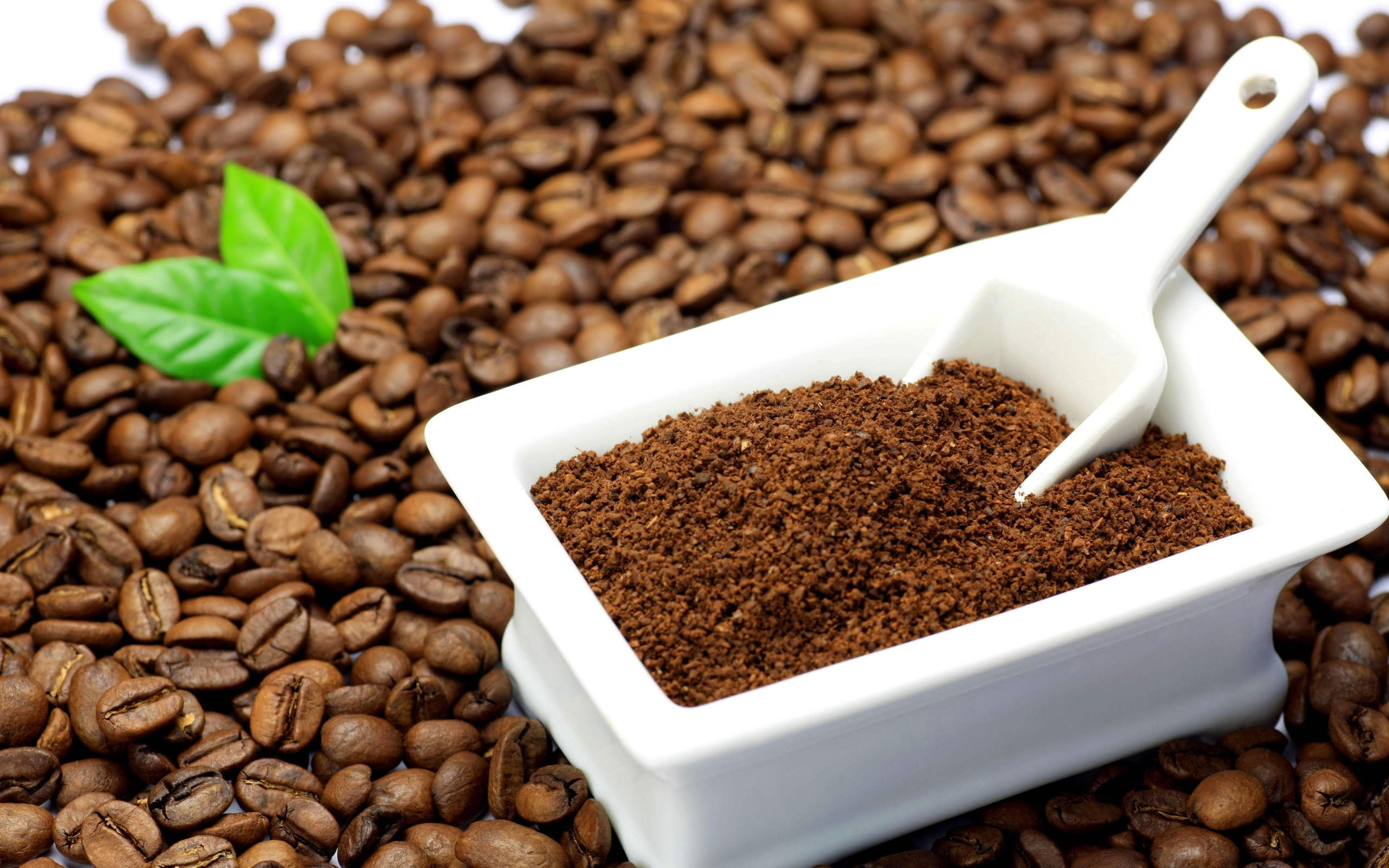 Coffee Grind size for Drip coffee